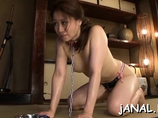 Sweet asian establishing babe endures cock in both abduct coupled with ass